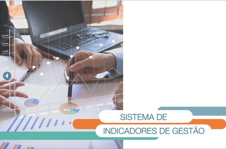 sistema-de-indicadores_fnq_meg_curso-on-line